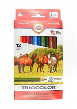 Pastelky Triocolor 12ks